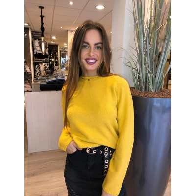 LaNorsa sweater yellow